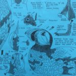 Sea Bird Patterns