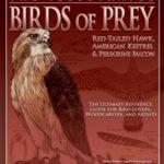 illus_birds_prey