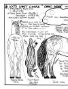 animals-1073-lighthorse-angloarab