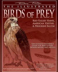 How To Carve Birds Of Prey